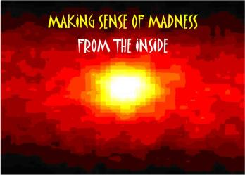 1.-making-sense-of-madness