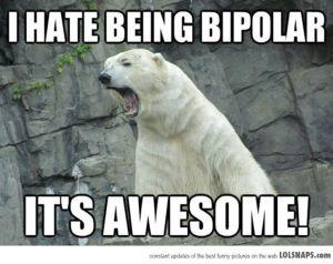 BipolarPolarBear-40978