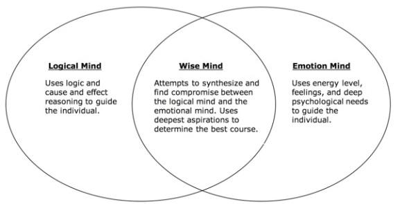 Concentric Circles Wise Mind Logical Mind Emotion Mind