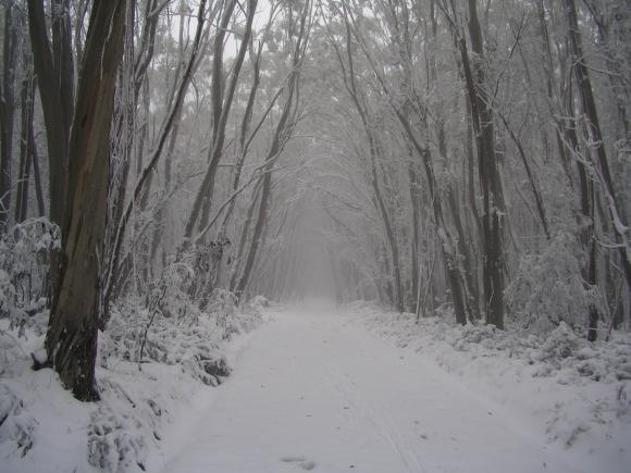 Lake-Mountain-trail